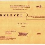k_oklevel